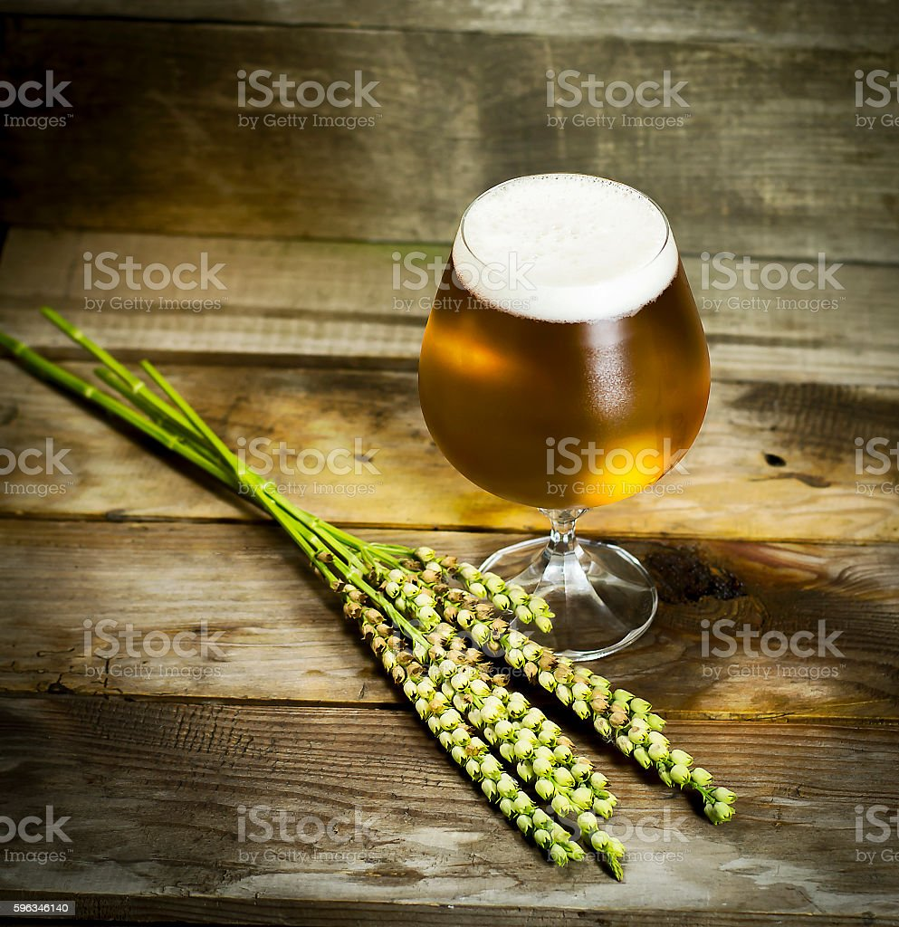 Glass of cold beer with wheat spikelets . Lizenzfreies stock-foto