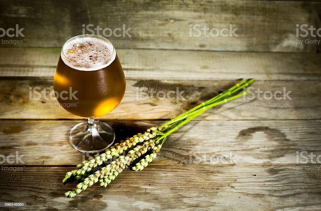 Glass of cold beer with wheat spikelets . royalty-free stock photo