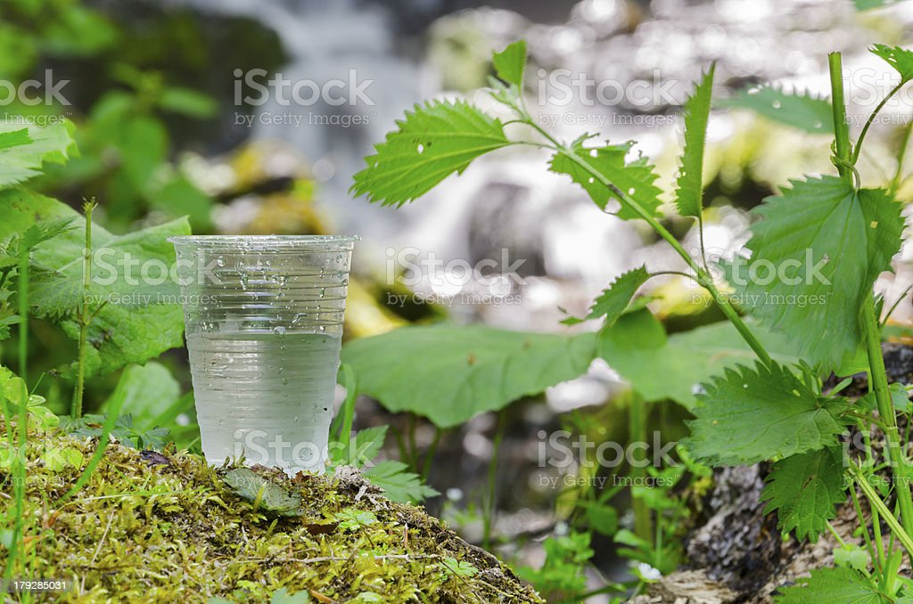 glass of drinking water near the foliage blurred waterfall stock photo
