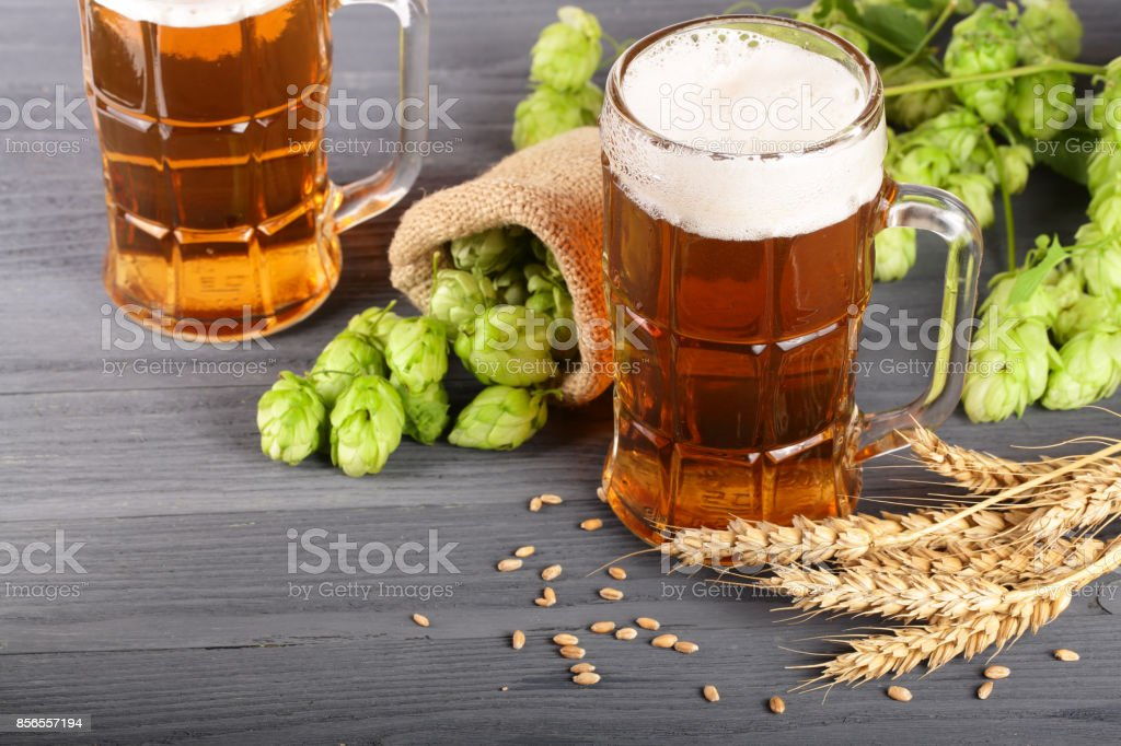 glass of foamy beer with hop cones and wheat on black wooden background stock photo