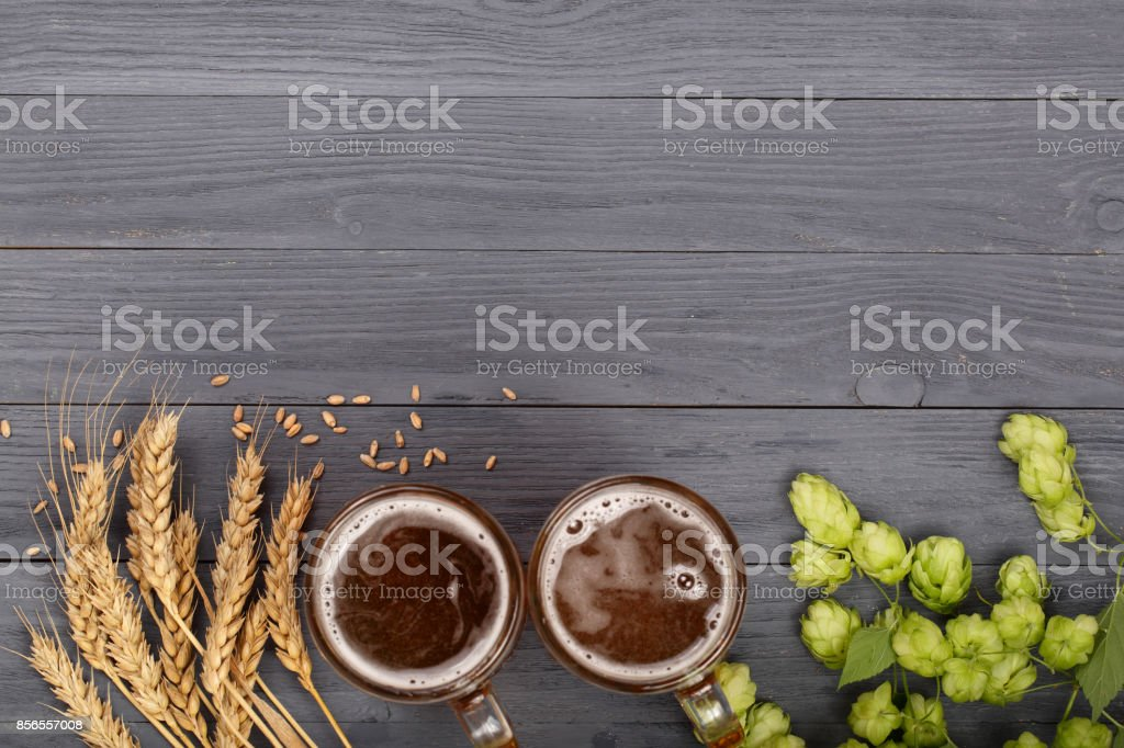 glass of foamy beer with hop cones and wheat on black wooden background. Top view with copy space for your text stock photo