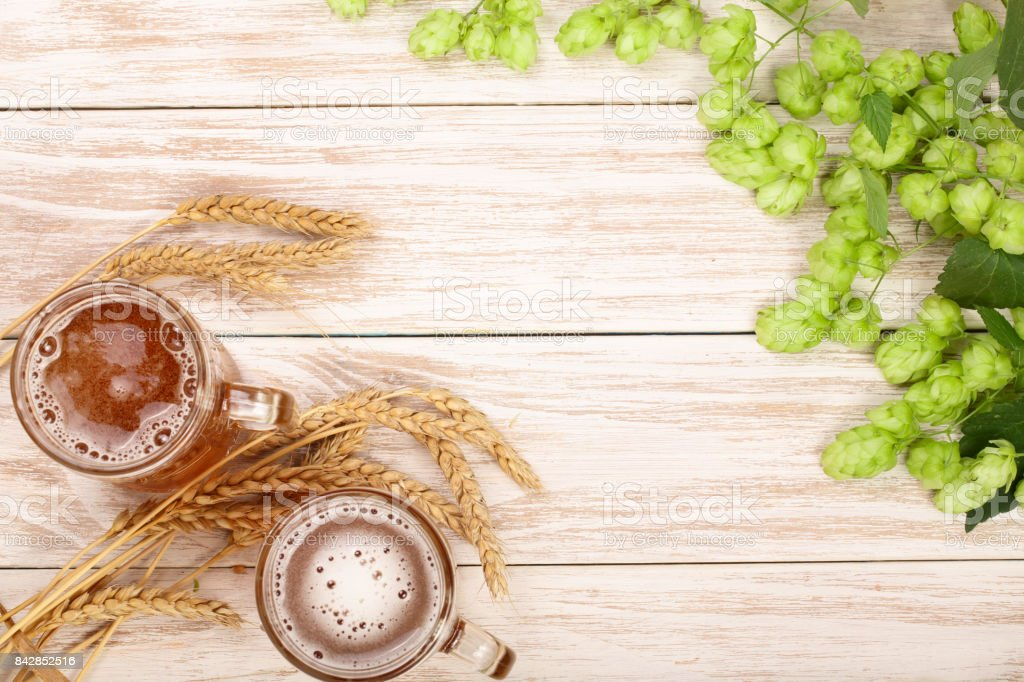 glass of foamy beer with hop cones and wheat on white wooden background. Top view with copy space for your text stock photo