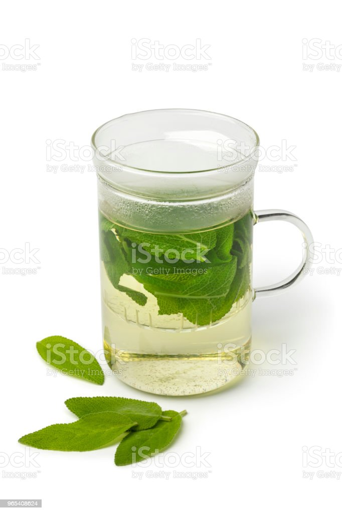Glass of healthy sage tea royalty-free stock photo