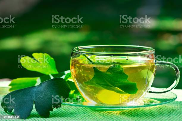 Photo of Glass of Herbaceous Tea with Ginkgo Leaves