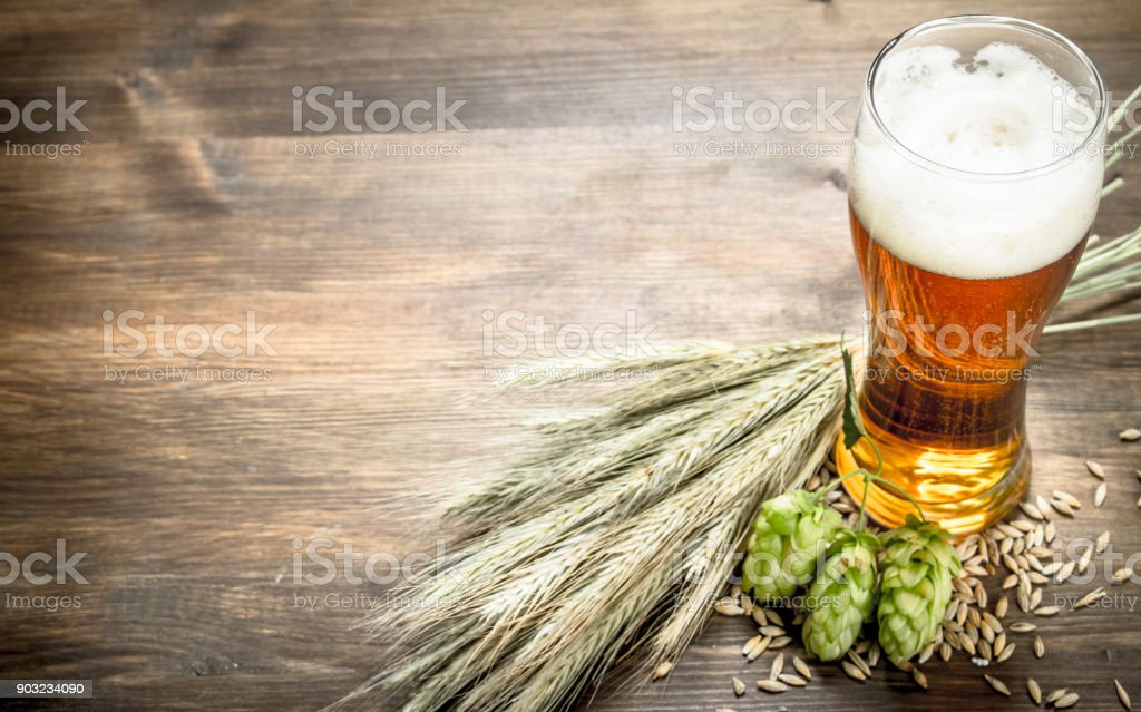 glass of natural beer. On wooden table. stock photo