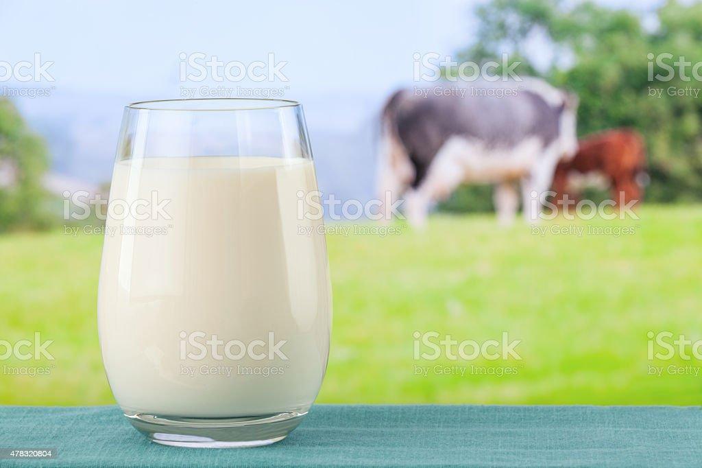 Glass of organic milk stock photo
