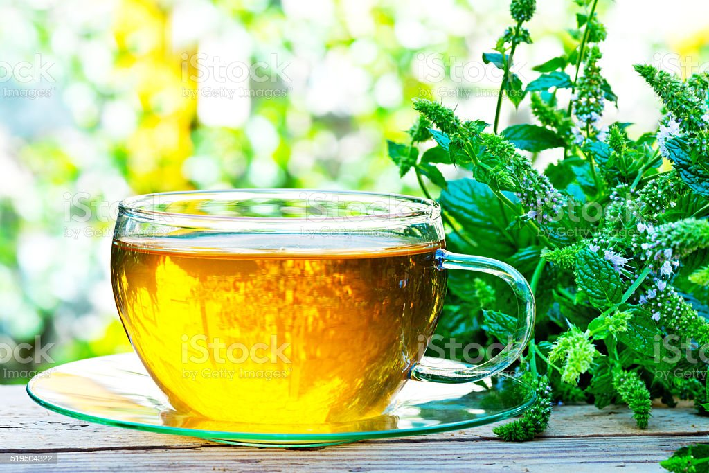 glass of peppermint tea with peppermint plant stock photo