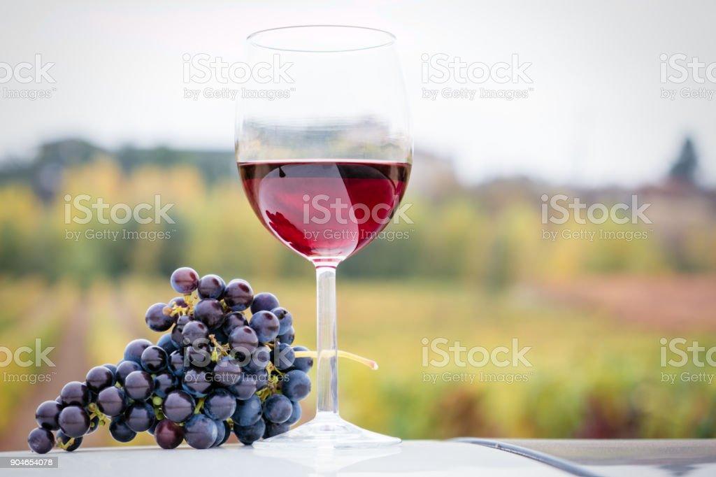 Glas Rotwein und Weintraube – Foto