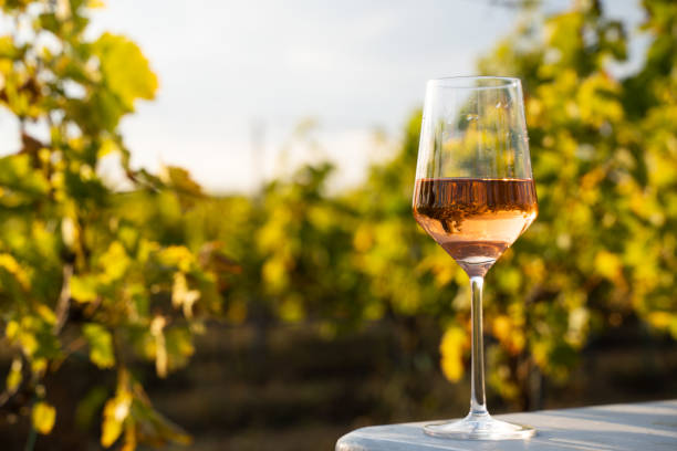 glass of rose wine on a table in the vineyard with blue sky stock photo