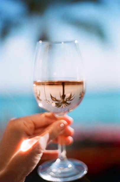 Glass of rose with a palm tree reflection picture id659635112?b=1&k=6&m=659635112&s=612x612&w=0&h=s x4t05ux3vvdklueavqgd67yyxvztpdftdmwl816l8=
