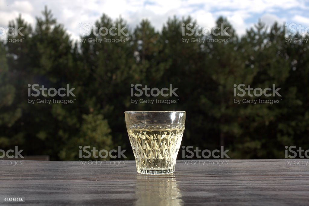 Glass of schnapps on the background of pine forest stock photo