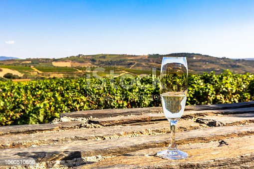 Glass of sparkling white wine on a Douro valley vineyard background. Muscatel culture in Portugal.