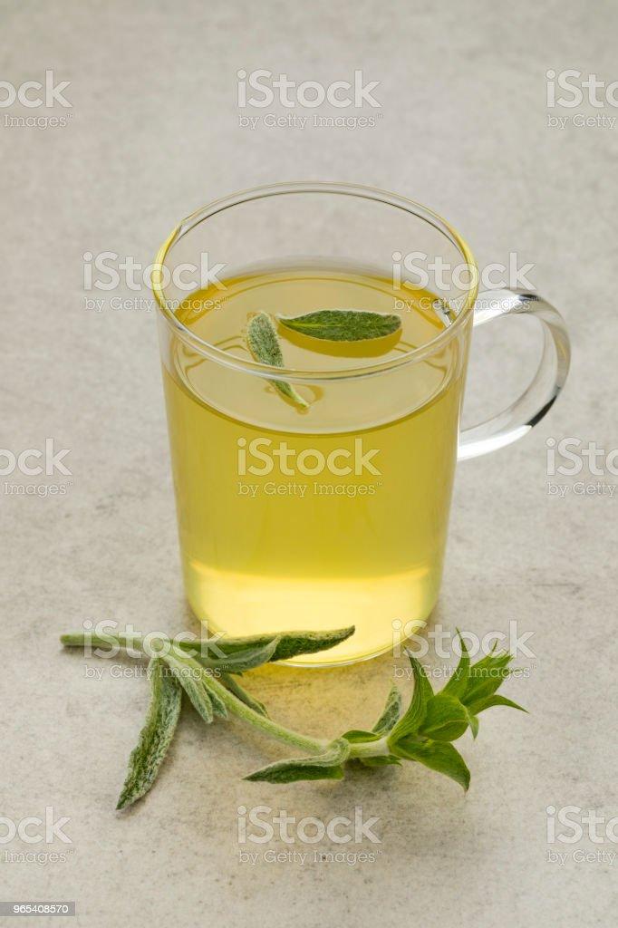 Glass of tea with a twig of fresh green ironwort zbiór zdjęć royalty-free