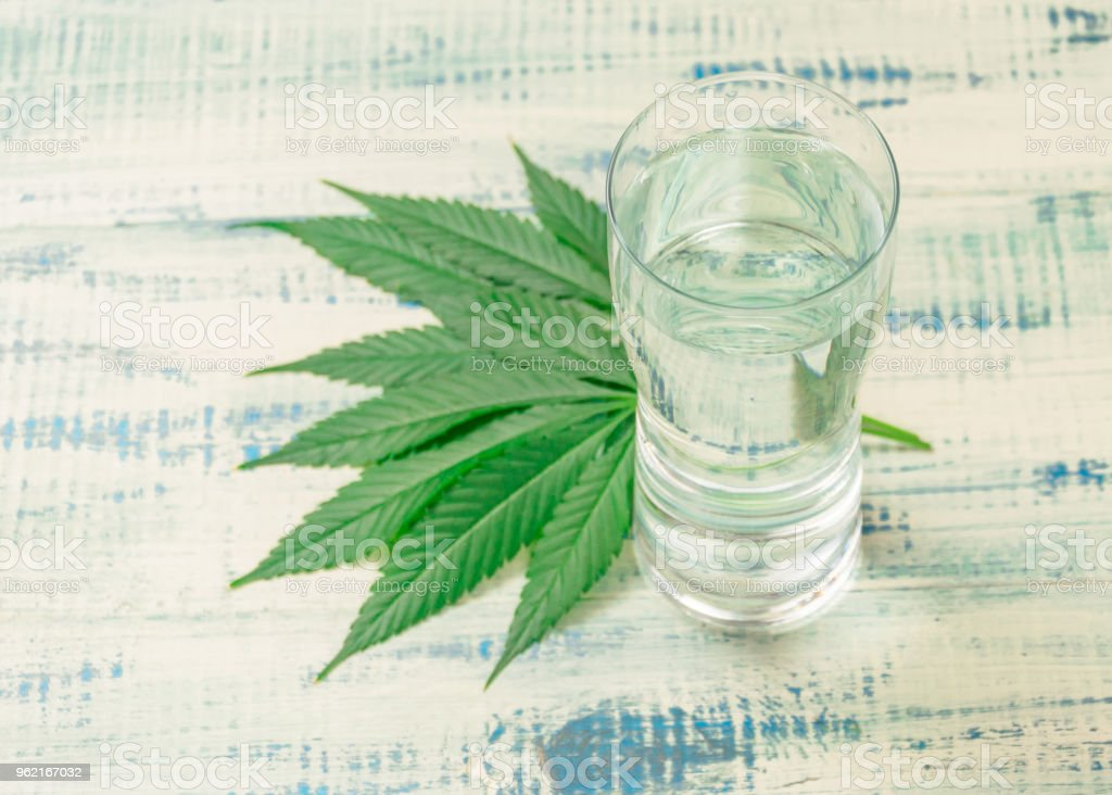 A glass of water and marijuana leaves. The concept of thirst after the use of marijuana. stock photo