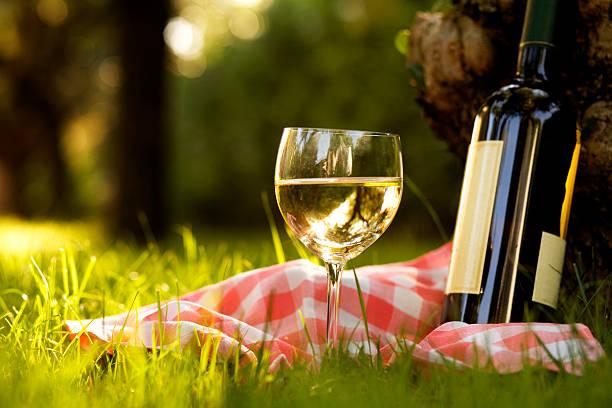 Glas Weißwein mit Flasche – Foto