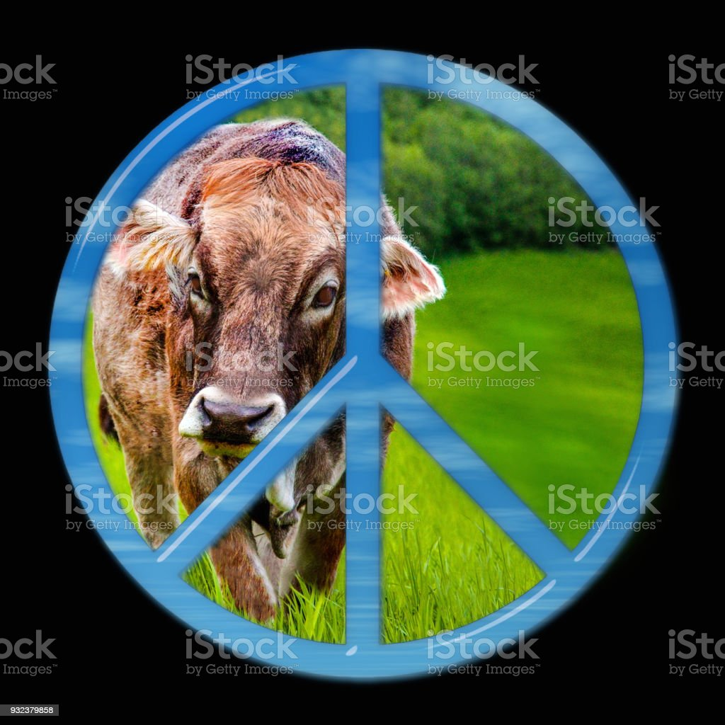Glass peace sign with cow stock photo