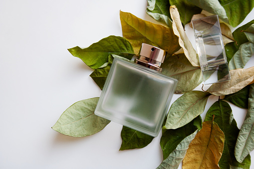 Rectangular glass perfume bottle with dry green and yellow leaves on white background