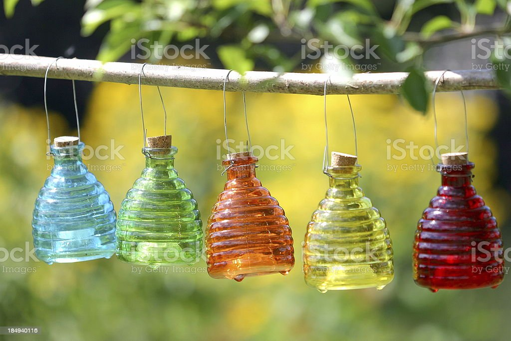Glass wasp catchers royalty-free stock photo