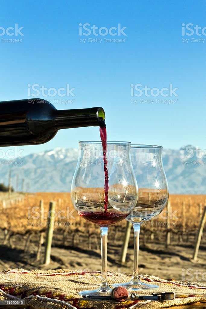 Glasses and bottle of red wine royalty-free stock photo