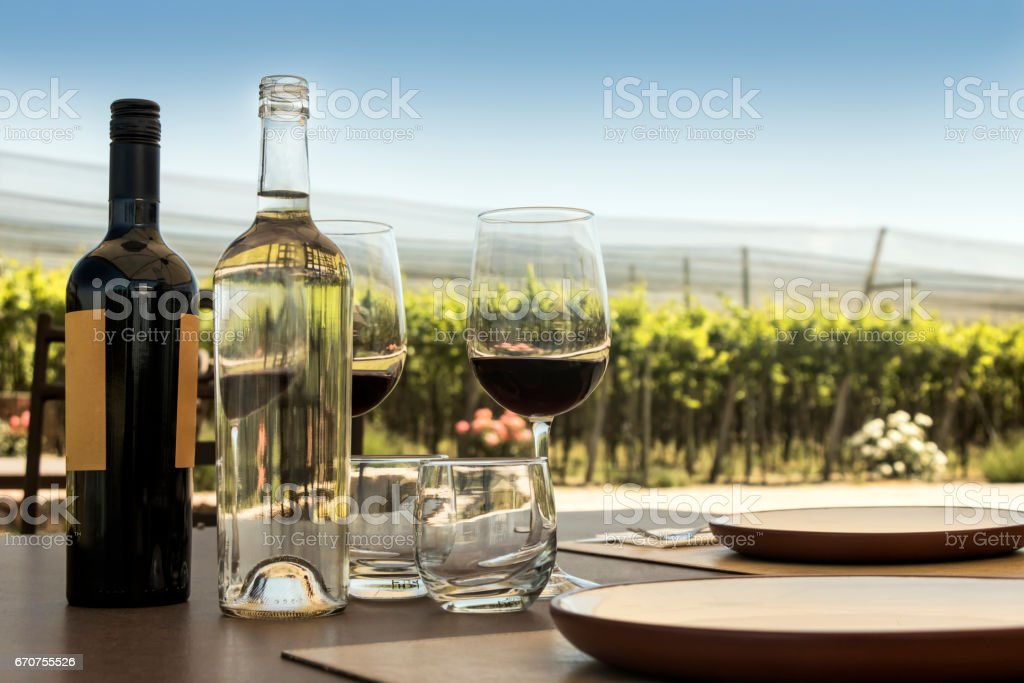 Glasses and bottle of red wine Wine tasting outdoor among vineyards Alcohol - Drink Stock Photo