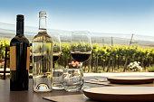 Wine tasting outdoor among vineyards