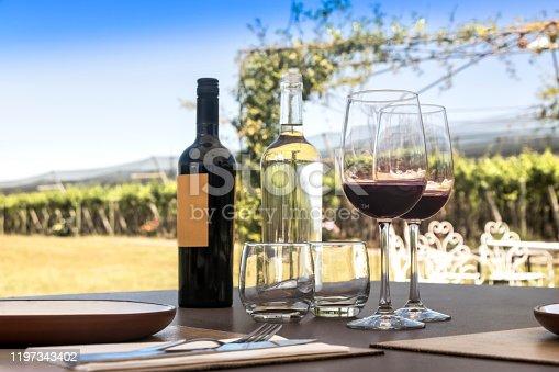 Wine tasting outdoor among vineyards.