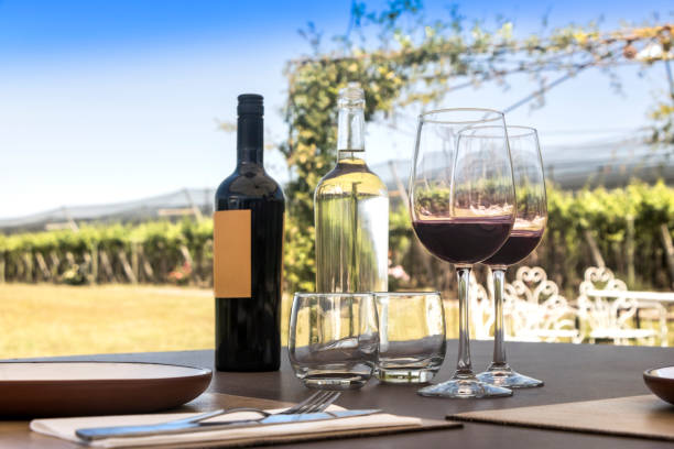 Glasses and bottle of red wine, with vineyard as a background. stock photo