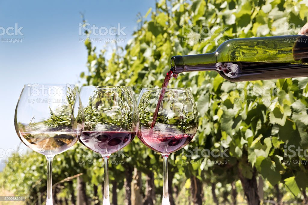 Glasses and bottle of wine stock photo