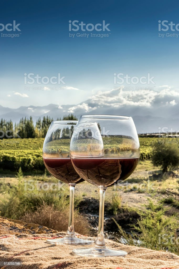 Glasses of red wine stock photo