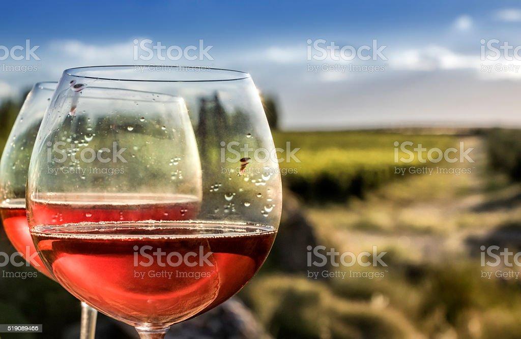 Glasses of rosé wine stock photo