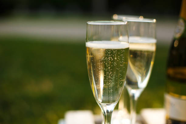 Glasses with champagne on green blurred background. Outdoors picnic weekends Glasses with champagne on green blurred background. Outdoors picnic weekends. champagne stock pictures, royalty-free photos & images