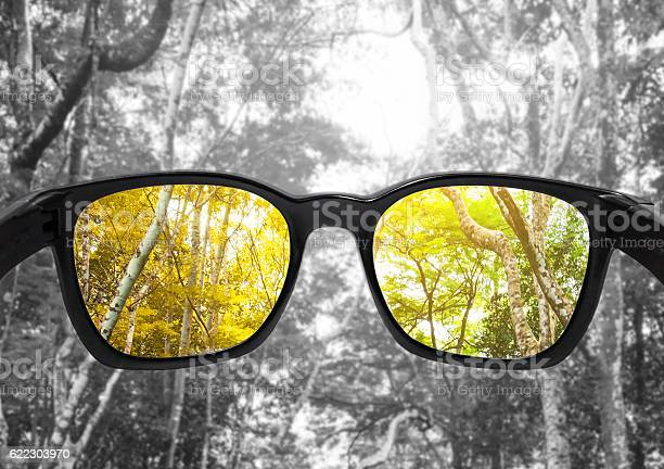 Glasses with forest selected focus on lens colour blindness glasses picture id622303970?b=1&k=6&m=622303970&s=612x612&h=8thlby7inuwmu7 mlb a9ojxvx8r7jqbsiundowzcui=