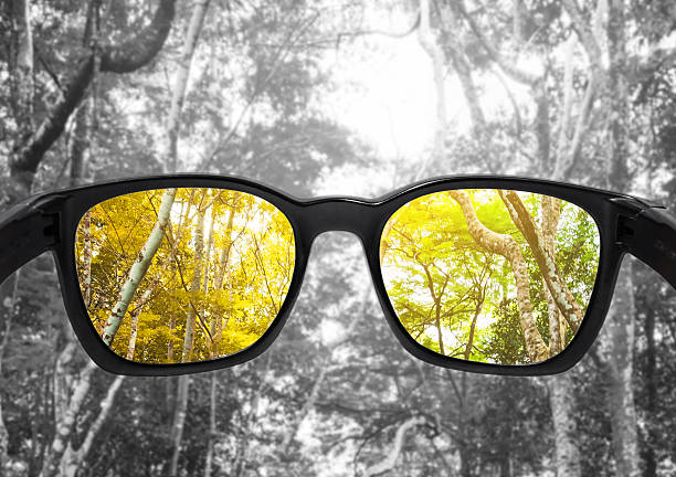 glasses with forest, selected focus on lens,  colour blindness glasses - point of view stock photos and pictures