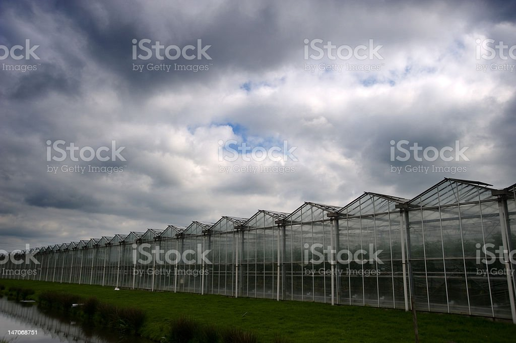 Glasshouse under a dramatic stormy sky royalty-free stock photo
