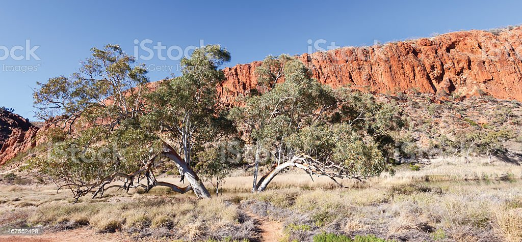 Glen Helen Waterhole Central Australia stock photo