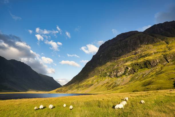 Glencoe stock photo