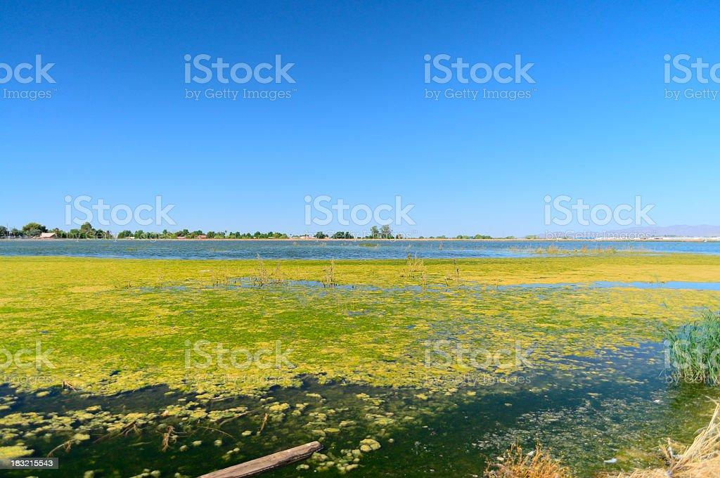 Glendale Arizona Waste Water Treatment Pond royalty-free stock photo