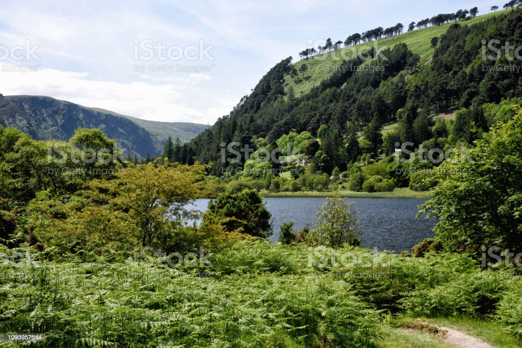 Green colored landscape at Glendalough in County Wicklow Ireland on a...