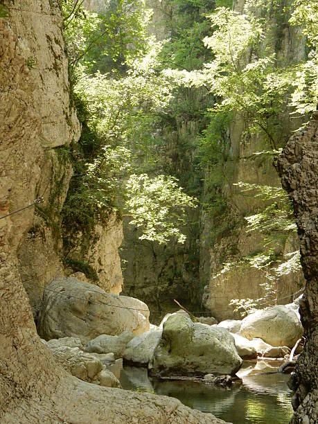 Scorcio del percorso Cusano Mutri, Benevento, Campania, Italy - August 27, 2016: A view of the path of adventure Caccaviola Gorges. percorso stock pictures, royalty-free photos & images