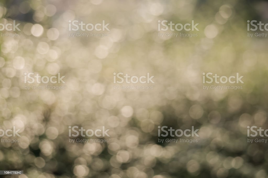 Glitter light form reflection of tree leaves with sun light, blurred...