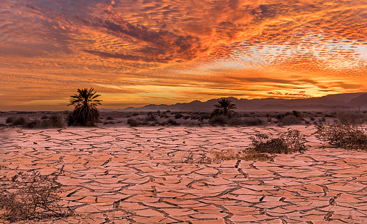 Colorful sunset in desert area, image depicts patterns of the global warming