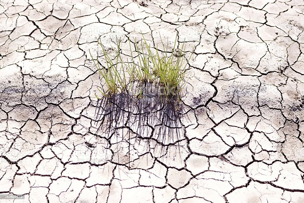 Global warming - parched earth royalty-free stock photo
