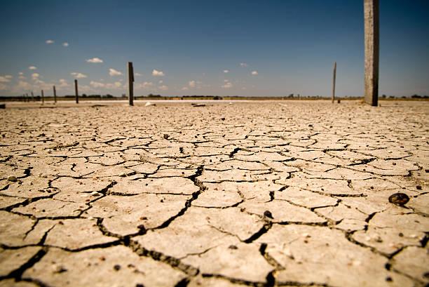 global warming - kuraklık stok fotoğraflar ve resimler