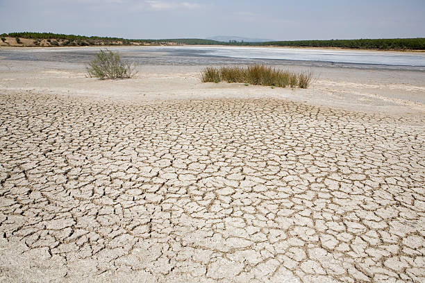Global warming Lake bed drying up due to drought. Global warming riverbed stock pictures, royalty-free photos & images