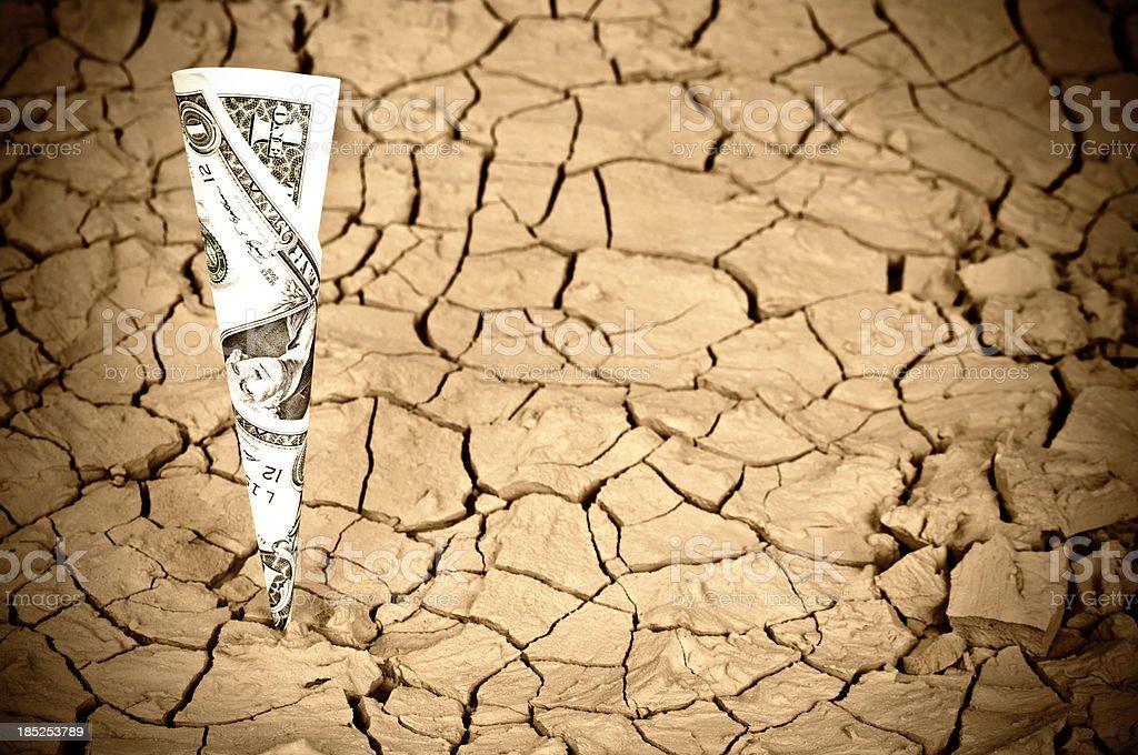 Global warming/Growing money royalty-free stock photo