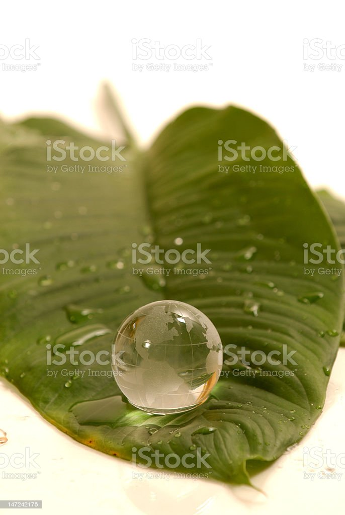globe on a leaf royalty-free stock photo