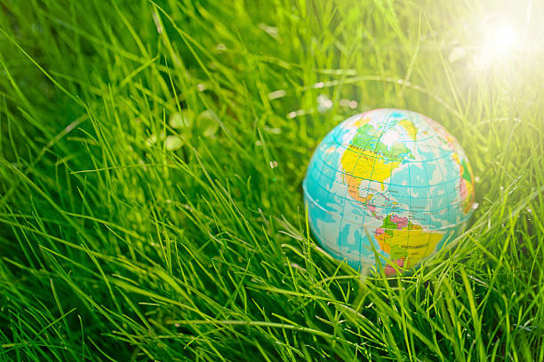 globe on grass. earth day, environment concept stock photo
