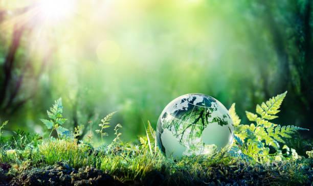 глобус на мхе в лесу - концепция окружающей среды - понятия и темы стоковые фото и изображения