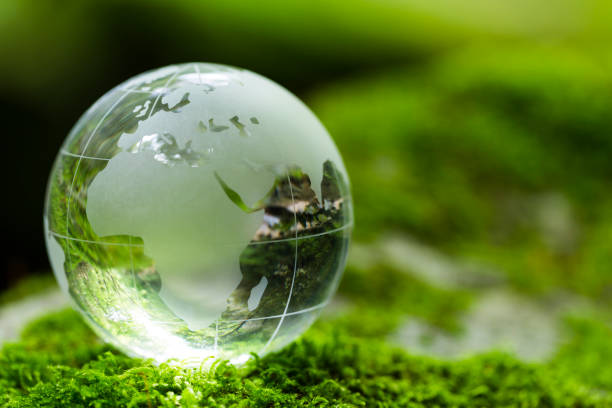 Globe On Mossy Rock In The Forest earth on moss covered rock in the forest satoyama scenery stock pictures, royalty-free photos & images