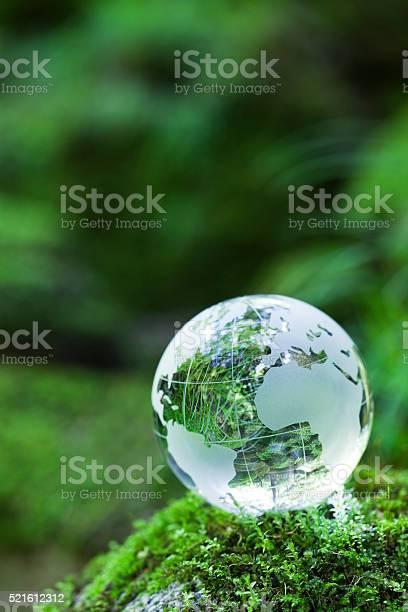 Globe on mossy rock picture id521612312?b=1&k=6&m=521612312&s=612x612&h=0  uh w1jaz5iaooqem9fjmyepwmfhs12m39utboi u=